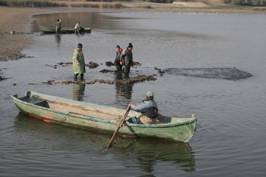 acvacultura pescuit
