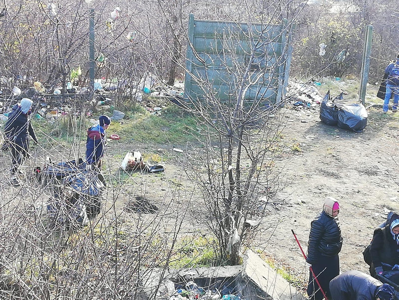igienizare Valea Portului 2