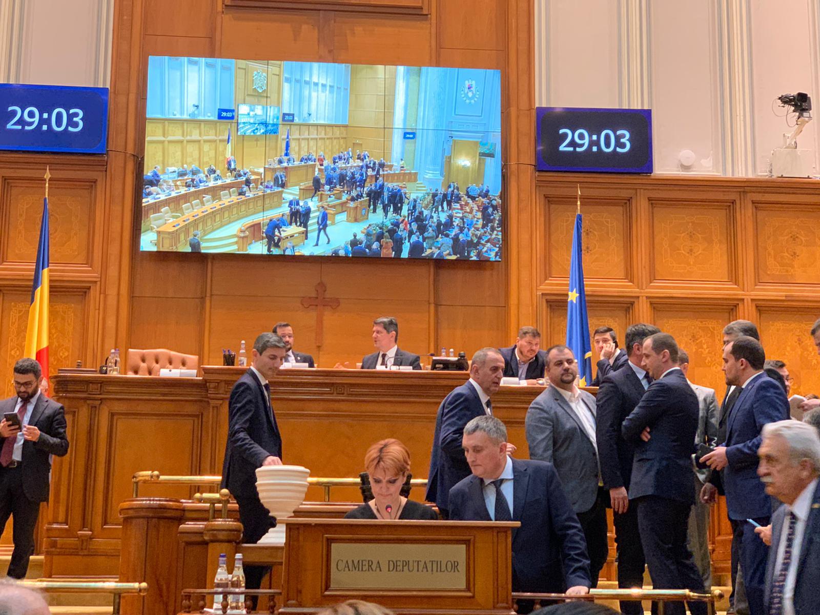 visan parlament camera deputatilor