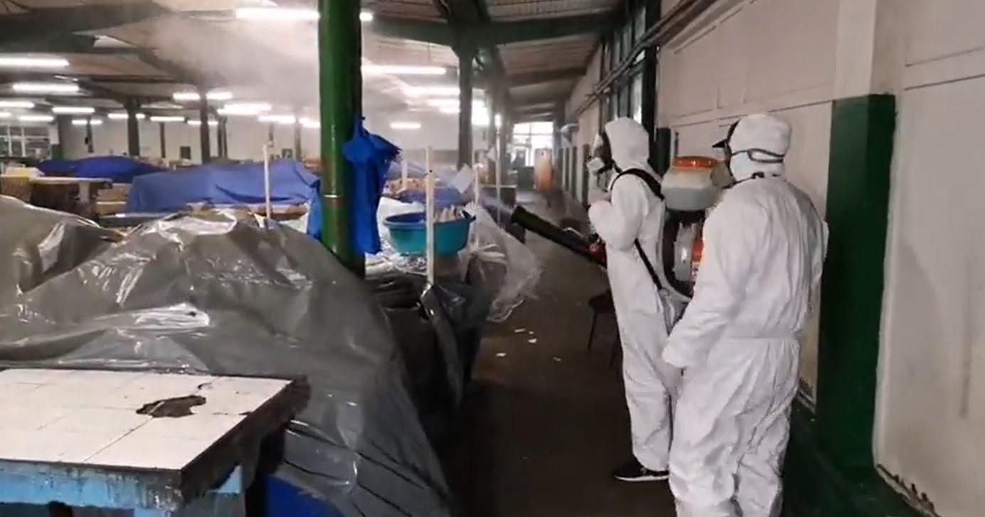 dezinfectie piata piete1