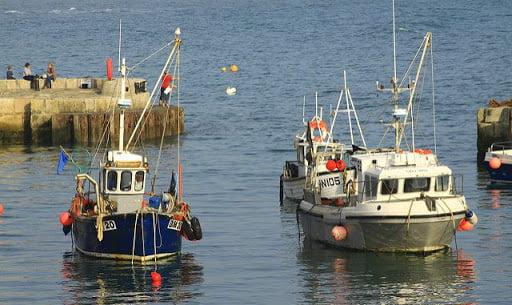 pescari pescuit maritim