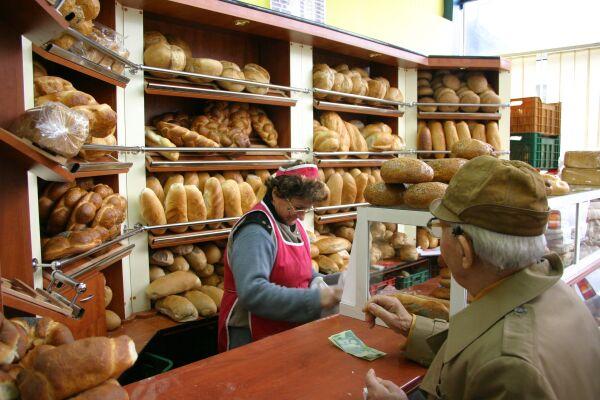 raft magazin paine