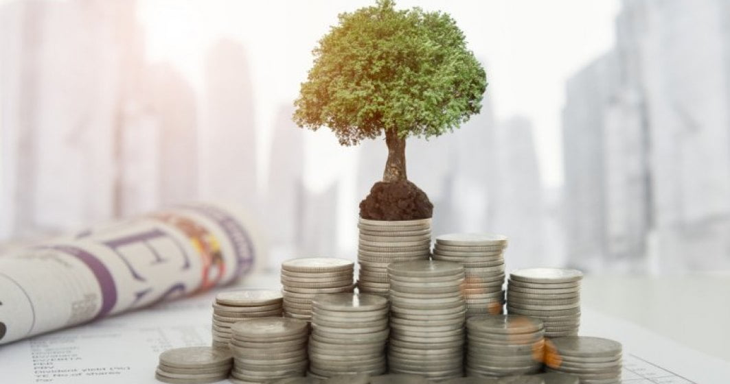 investitii bani economie