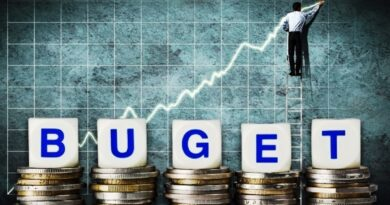 buget bani economie