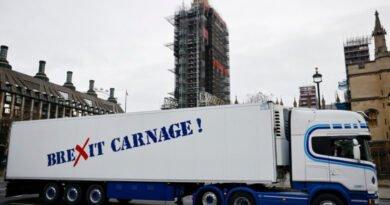 camioane camion