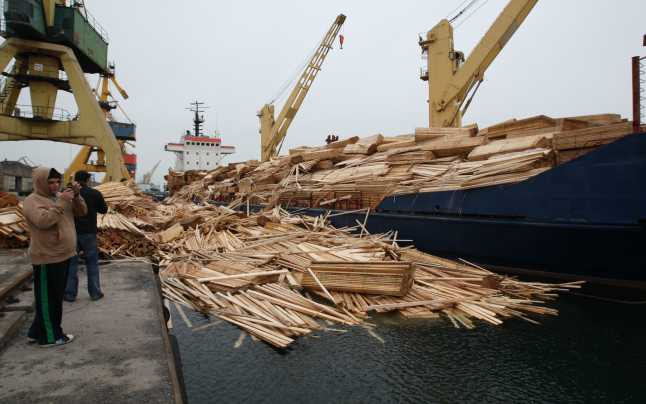 lemne portul constanta