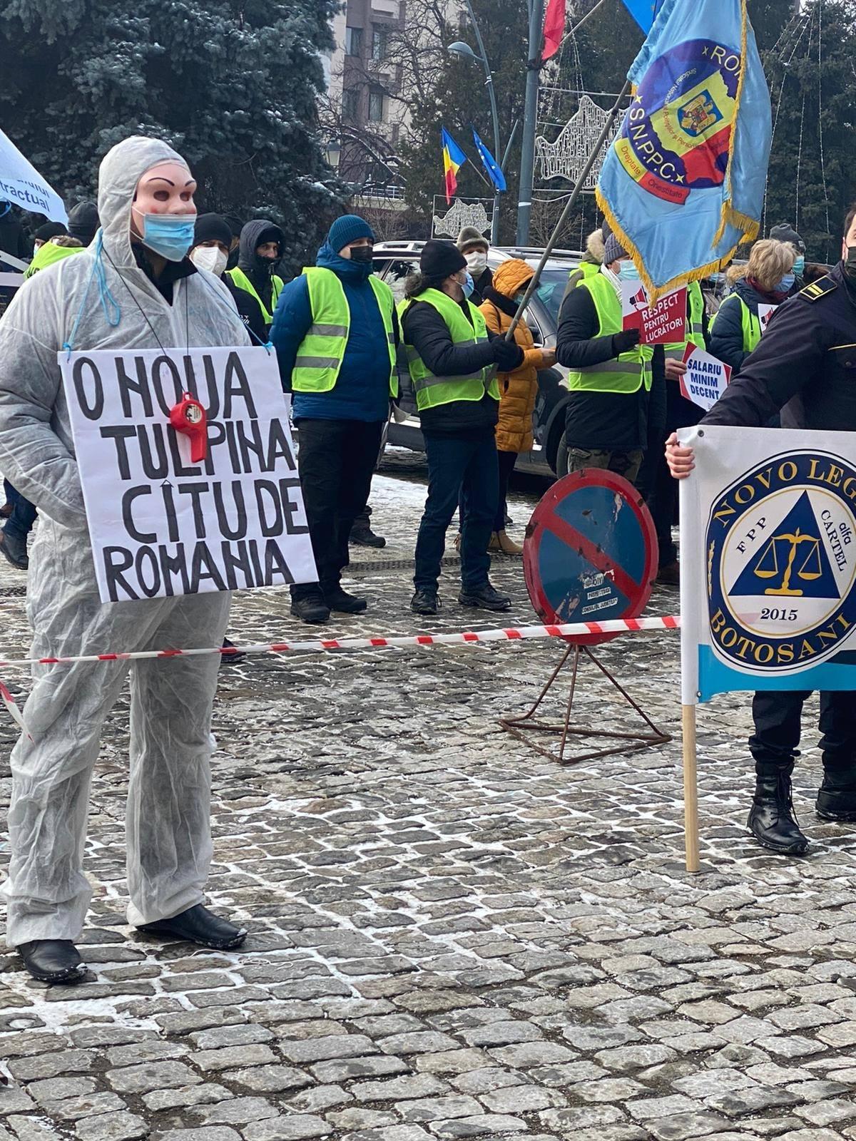 protest cartel alfa 1
