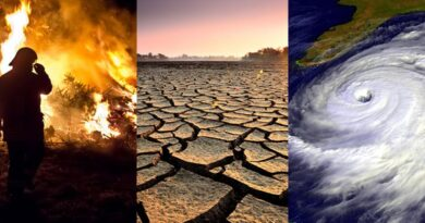 schimbari climatice mediu poluare protectia