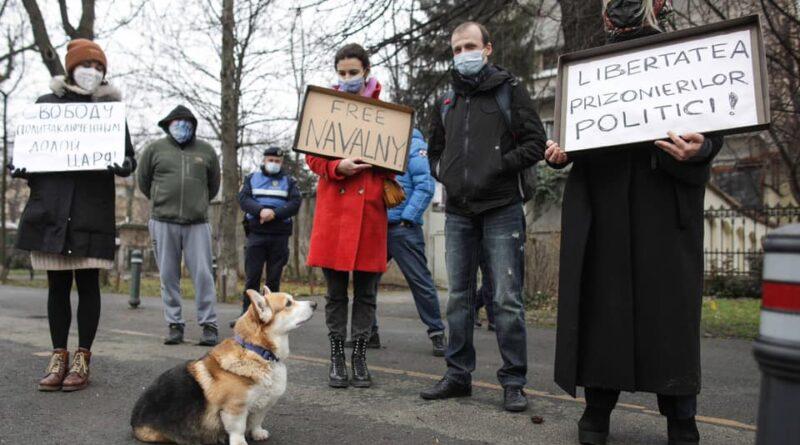 protest navalnii