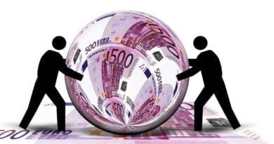 rezilienta bani euro