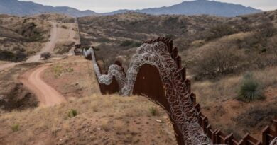 zid mexic1