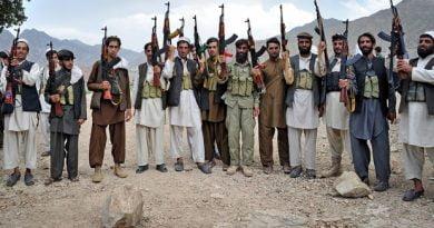 talibani