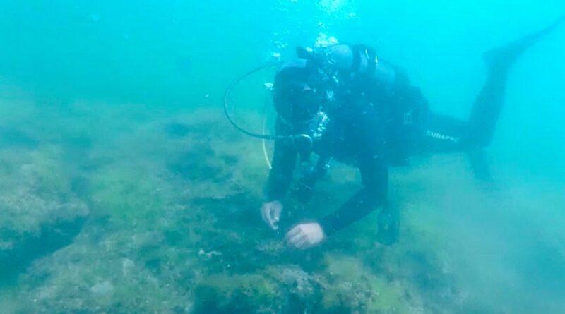 Vestigii subacvatice