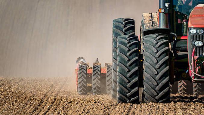apia agricultura