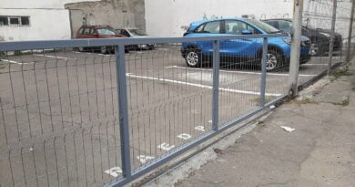 parcare ferdinand
