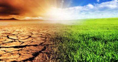 seceta schimbari climatice protectia mediului